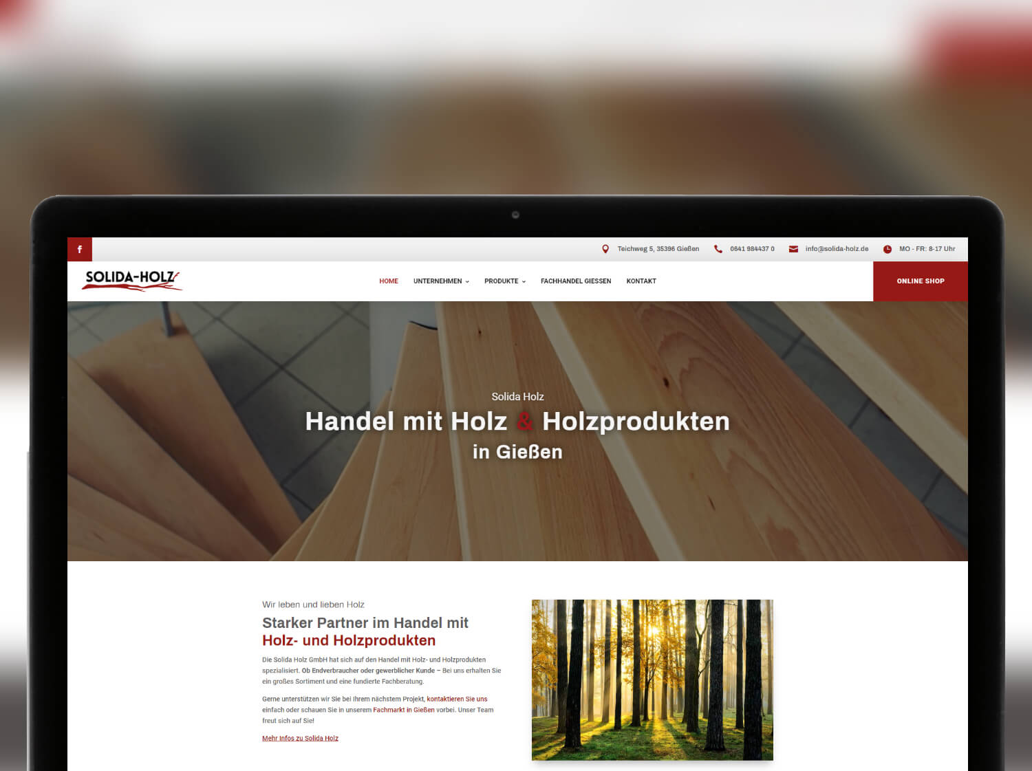 Screenshot Website Solida Holz